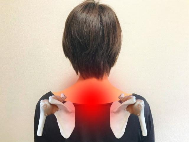 肩甲骨の間の痛み